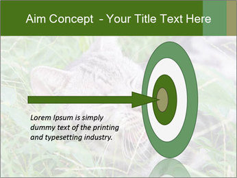 0000077284 PowerPoint Template - Slide 83