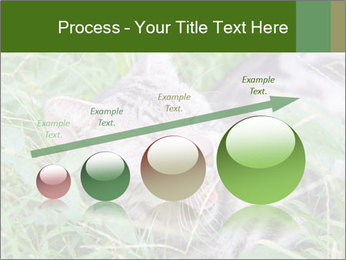 0000077284 PowerPoint Template - Slide 87