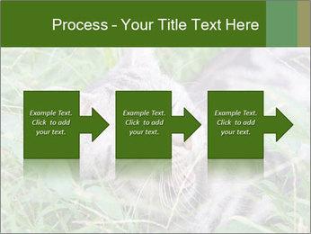 0000077284 PowerPoint Templates - Slide 88