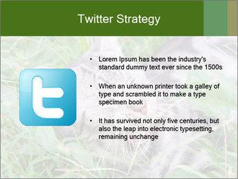 0000077284 PowerPoint Templates - Slide 9