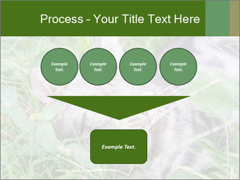 0000077284 PowerPoint Template - Slide 93