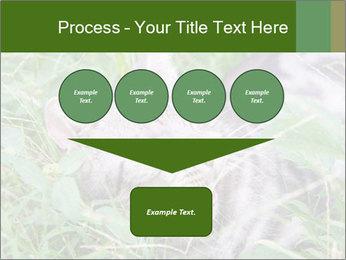 0000077284 PowerPoint Templates - Slide 93