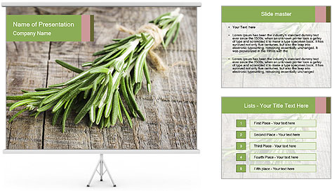 0000077288 PowerPoint Template