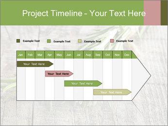 0000077288 PowerPoint Templates - Slide 25