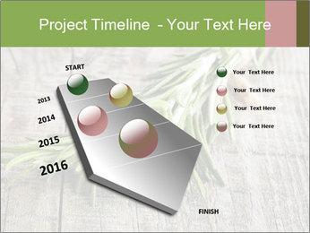 0000077288 PowerPoint Templates - Slide 26