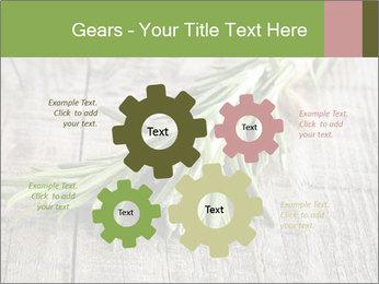 0000077288 PowerPoint Templates - Slide 47