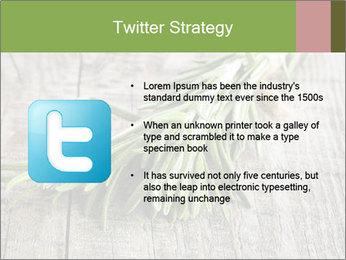 0000077288 PowerPoint Templates - Slide 9
