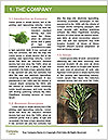 0000077288 Word Template - Page 3