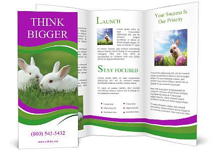 0000077290 Brochure Template
