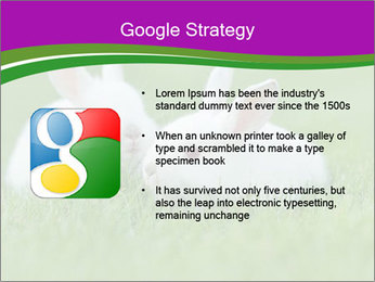 0000077290 PowerPoint Template - Slide 10