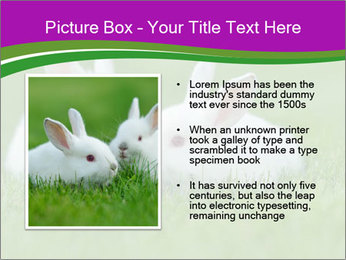 0000077290 PowerPoint Template - Slide 13