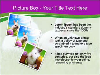 0000077290 PowerPoint Template - Slide 17