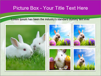 0000077290 PowerPoint Template - Slide 19