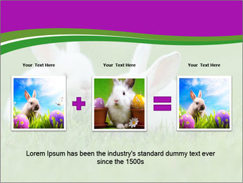 0000077290 PowerPoint Template - Slide 22