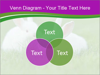 0000077290 PowerPoint Template - Slide 33
