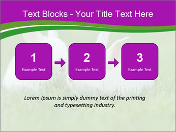 0000077290 PowerPoint Template - Slide 71