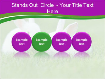 0000077290 PowerPoint Template - Slide 76