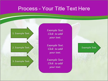 0000077290 PowerPoint Template - Slide 85