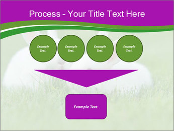 0000077290 PowerPoint Template - Slide 93