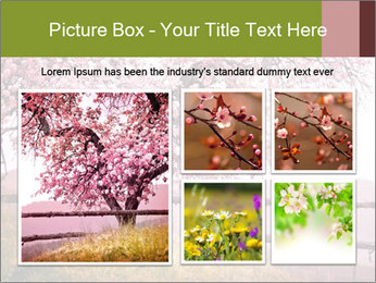 0000077299 PowerPoint Template - Slide 19