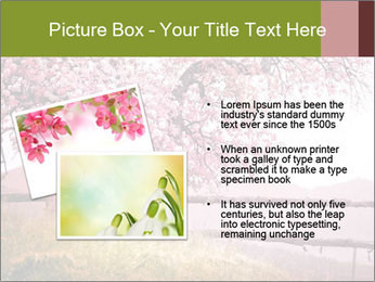 0000077299 PowerPoint Template - Slide 20
