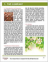 0000077299 Word Templates - Page 3
