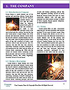0000077304 Word Template - Page 3