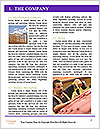 0000077308 Word Template - Page 3