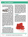0000077310 Word Template - Page 3