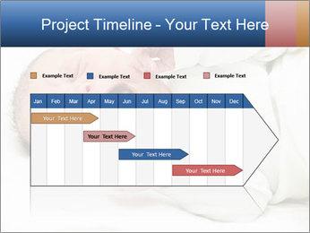 0000077311 PowerPoint Template - Slide 25
