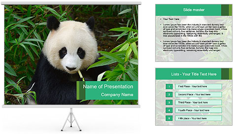 0000077314 PowerPoint Template
