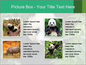 0000077314 PowerPoint Templates - Slide 14