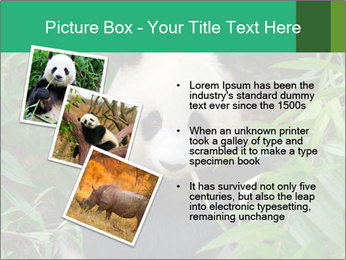 0000077314 PowerPoint Templates - Slide 17