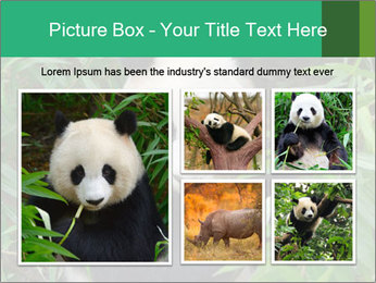 0000077314 PowerPoint Templates - Slide 19