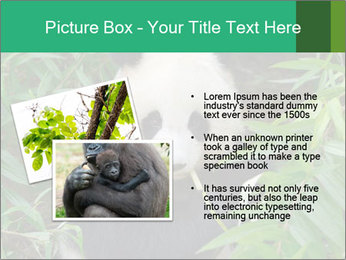 0000077314 PowerPoint Templates - Slide 20