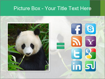 0000077314 PowerPoint Templates - Slide 21