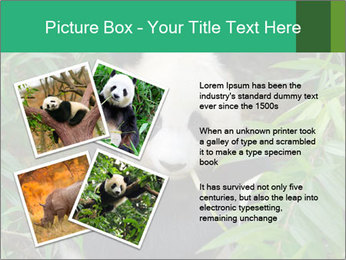 0000077314 PowerPoint Templates - Slide 23