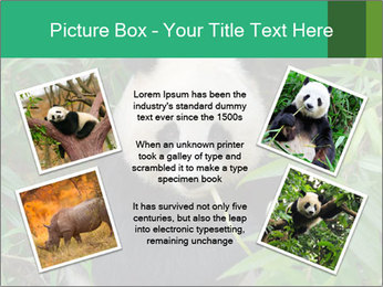 0000077314 PowerPoint Templates - Slide 24