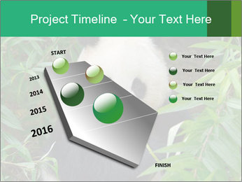 0000077314 PowerPoint Templates - Slide 26