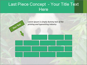 0000077314 PowerPoint Template - Slide 46