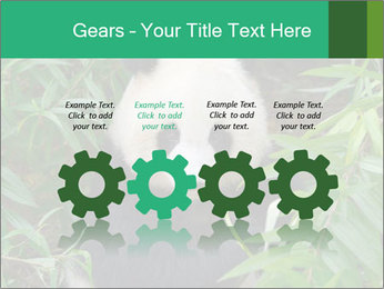 0000077314 PowerPoint Templates - Slide 48