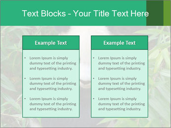 0000077314 PowerPoint Templates - Slide 57