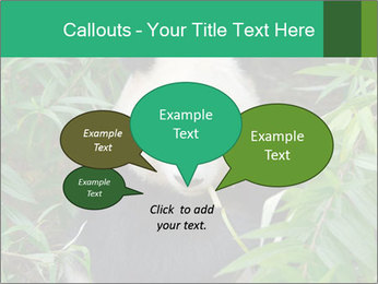 0000077314 PowerPoint Templates - Slide 73