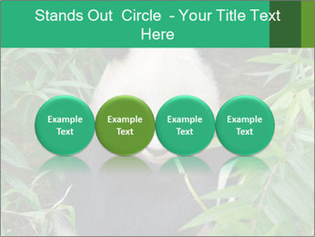 0000077314 PowerPoint Templates - Slide 76