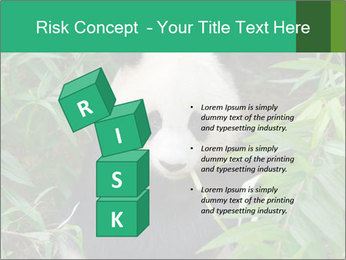 0000077314 PowerPoint Template - Slide 81