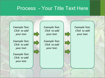 0000077314 PowerPoint Templates - Slide 86