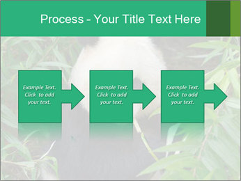 0000077314 PowerPoint Template - Slide 88