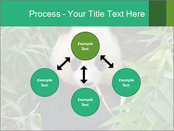 0000077314 PowerPoint Templates - Slide 91