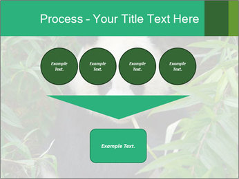 0000077314 PowerPoint Template - Slide 93