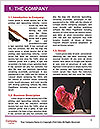 0000077317 Word Template - Page 3